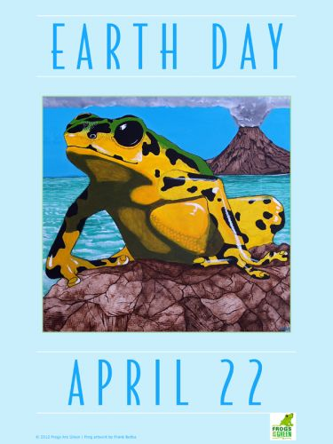 Earth Day Frog near Volcano