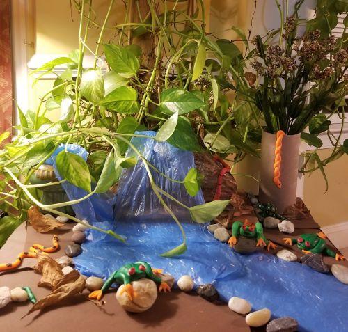 3D Rainforest Life by Vihaan Deshmukh, 7yrs, New Jersey USA